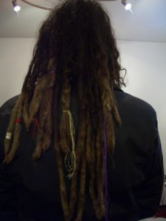 Piepsi's dreadlocks, rear view